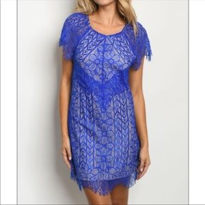 🆕Royal Blue Lace Backless Shift Dress